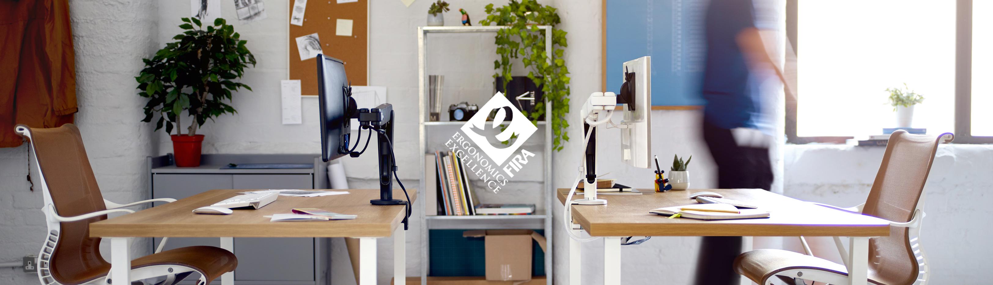 Ollin-office-profile_01